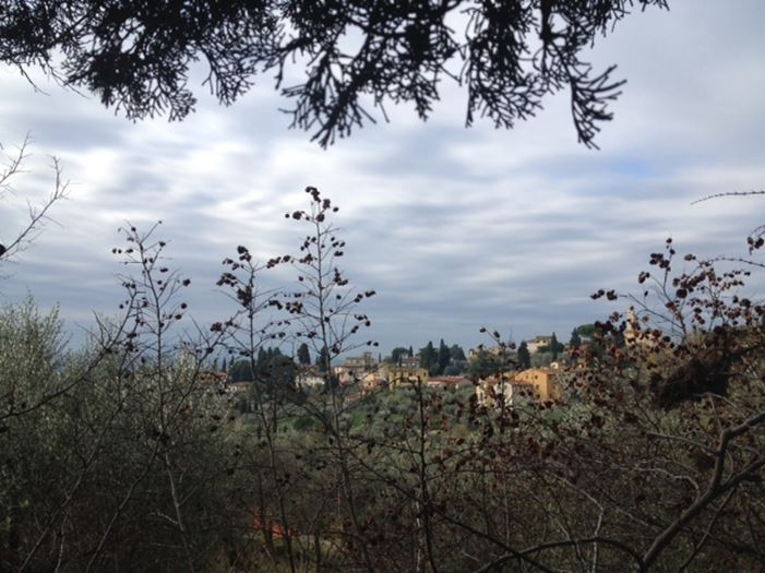 CAPAStudyAbroad_Florence_Fall2014_from-Emily-Kyle-view.jpg