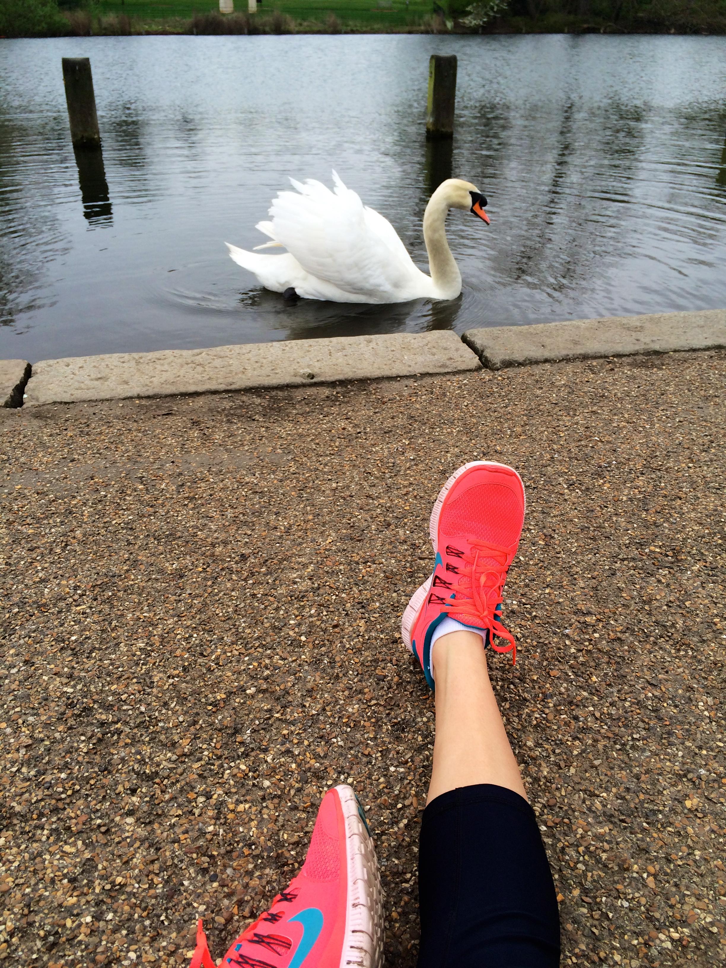 CAPAStudyAbroad_London_Spring2014_Morning_Run_through_Kensington_Gardens_by_Sophia_Love