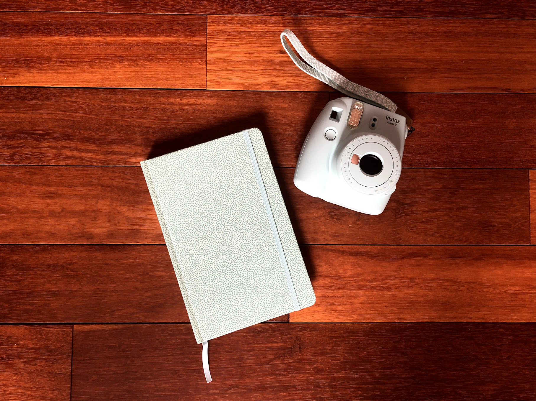 A picture of a Poloroid Camera and Journal