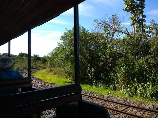 Iguazú_Falls_Day_2_train