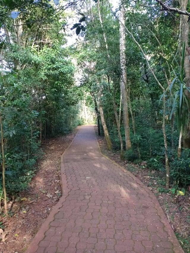 Iguazú_Falls_path