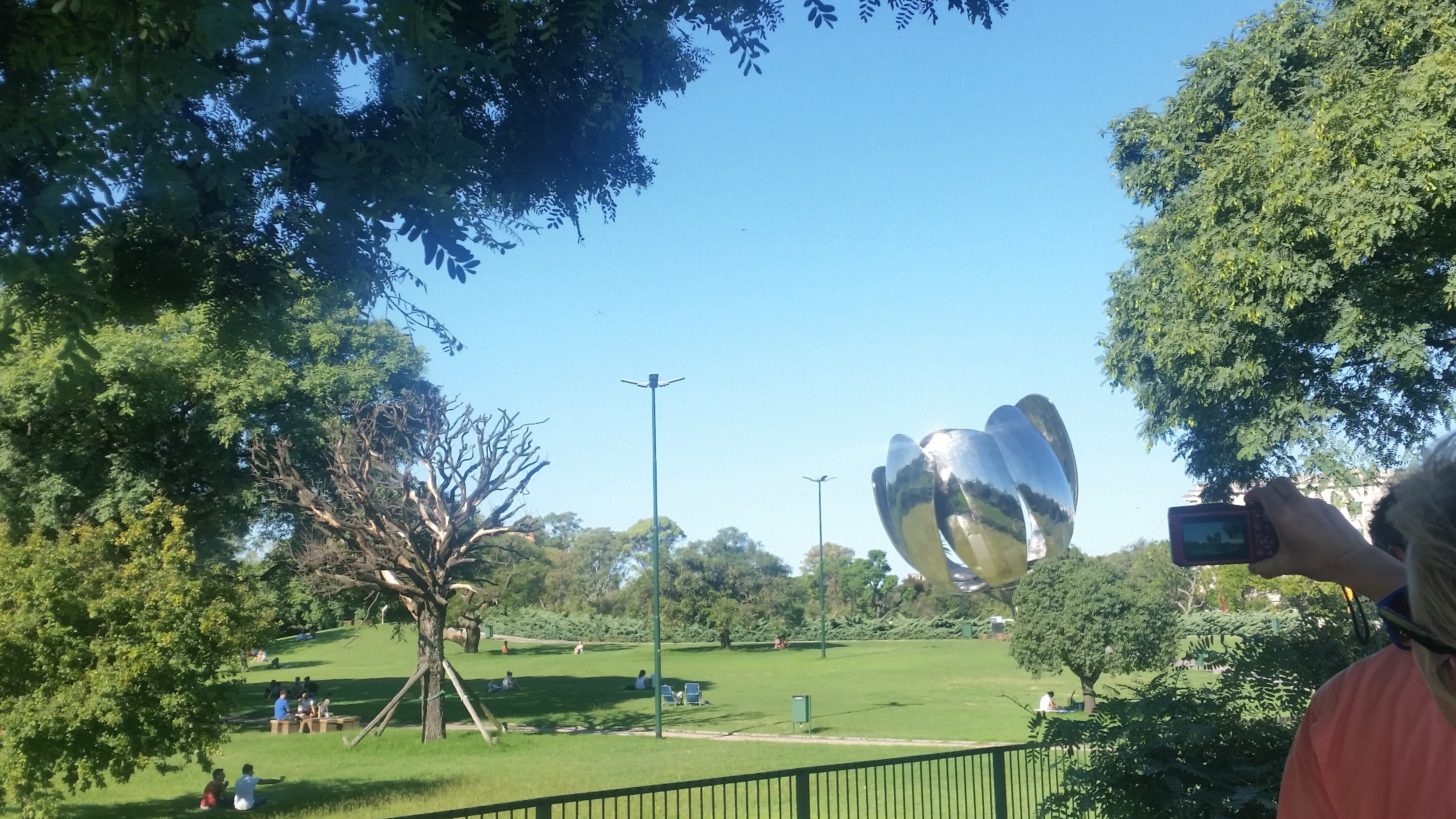 CAPAStudyAbroad_BuenosAires_Summer2017_From Elizabeth Withers Floralis Generica.jpg