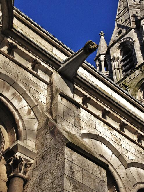 CAPAStudyAbroad_Dublin_Spring2017_From Nathan Overlock - Ireland - Fin Barre's Cathedral in Cork.jpg