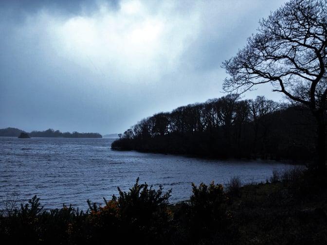 CAPAStudyAbroad_Dublin_Spring2017_From Nathan Overlock - Ireland - Killarney National Park.jpg