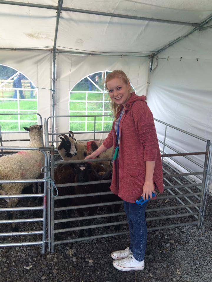 CAPAStudyAbroad_Dublin_Summer2016_From Lily Garnett - Sheep.jpg