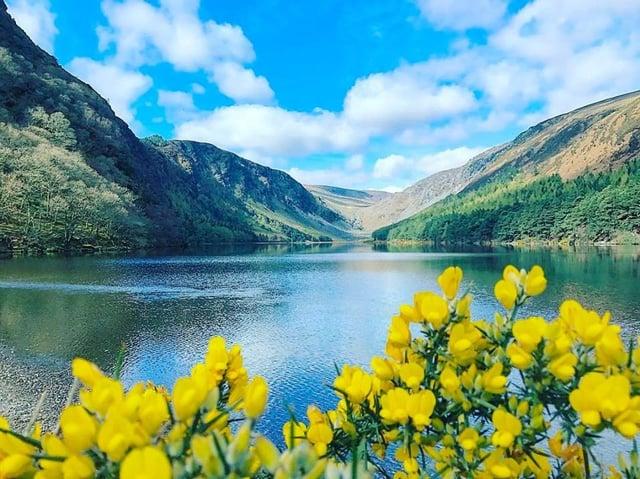 CAPAStudyAbroad_Dublin_Summer2017_From Anna Budny 3.jpg