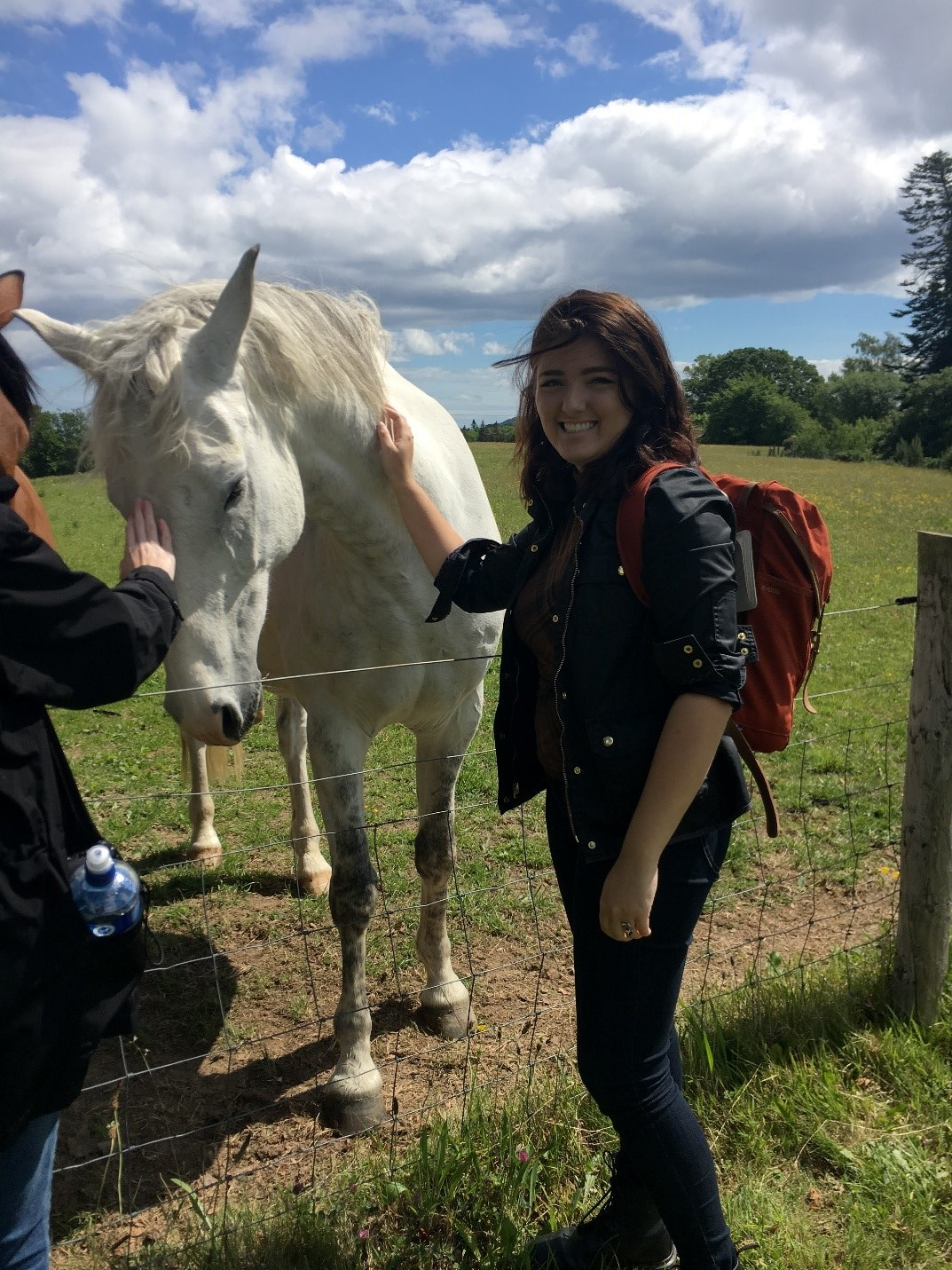 CAPAStudyAbroad_Dublin_Summer2017_From Madeline Messina Horses.jpg