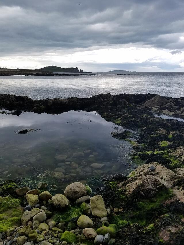 CAPAStudyAbroad_Dublin_Summer2017_From Madeline Messina Howth 3-1.jpg
