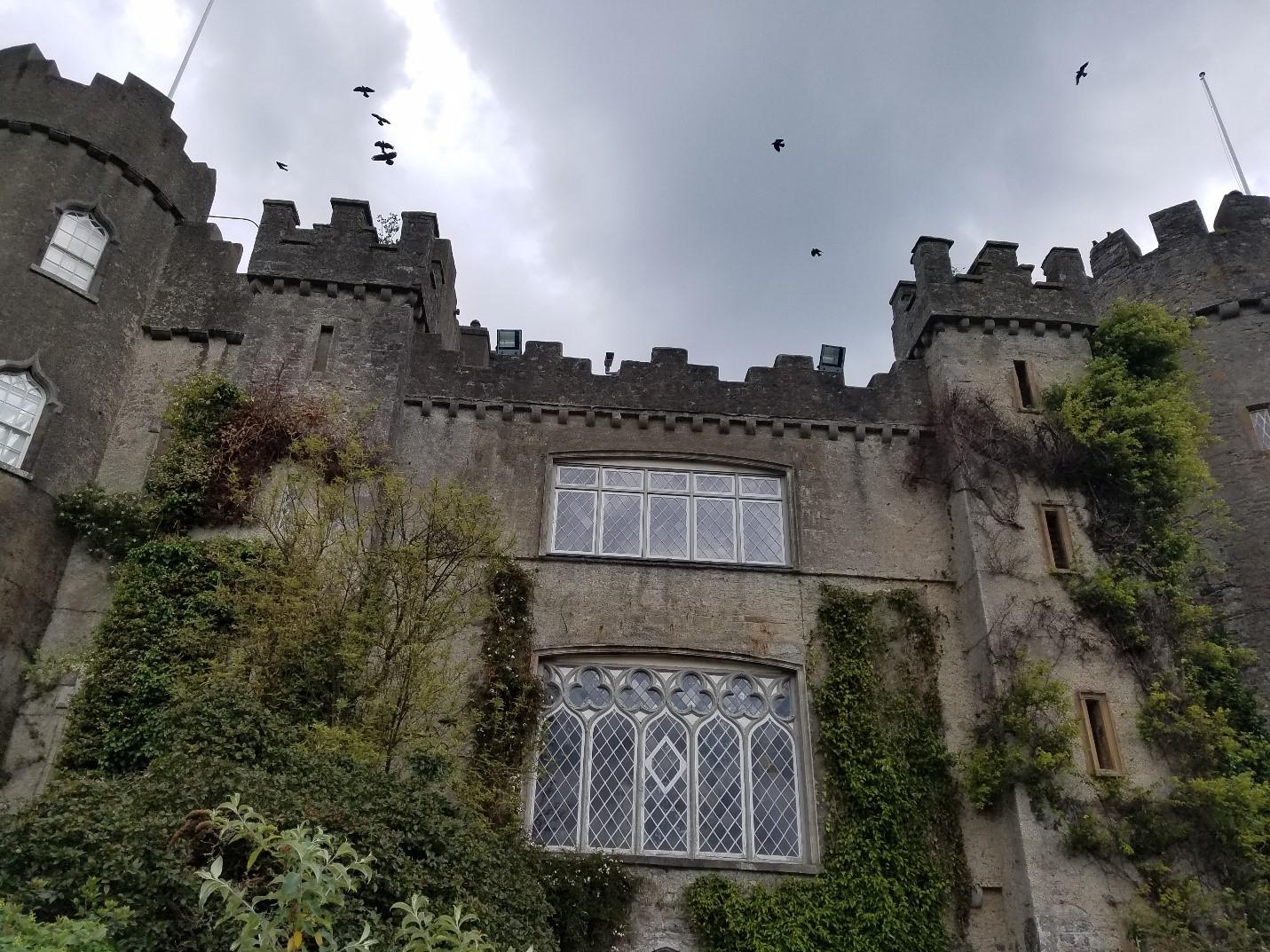 CAPAStudyAbroad_Dublin_Summer2017_From Madeline Messina Malahide Castle.jpg