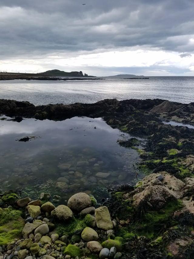 CAPAStudyAbroad_Dublin_Summer2017_From Madeline Messina Reflection 3.jpg