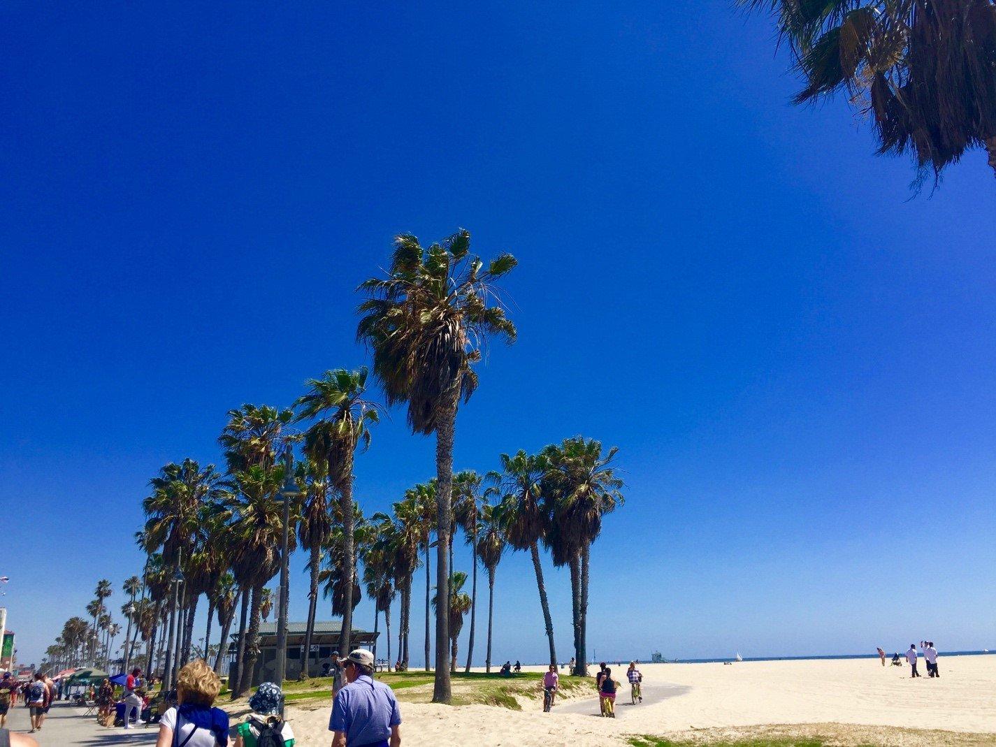 CAPAStudyAbroad_Emily_Kearns_on_Travel_in_California3.jpg