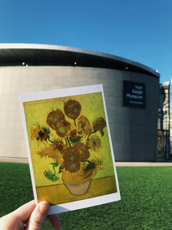 CAPAStudyAbroad_Fall2017_Dublin_From Elizabeth Leahy - Fall Break_Sunflowers Art Outside the Van Gogh Museum in Amsterdam.png