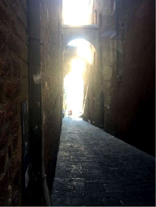 CAPAStudyAbroad_Florence_Fall2016_-_From_Spence_Hood_-_Language_Post.png