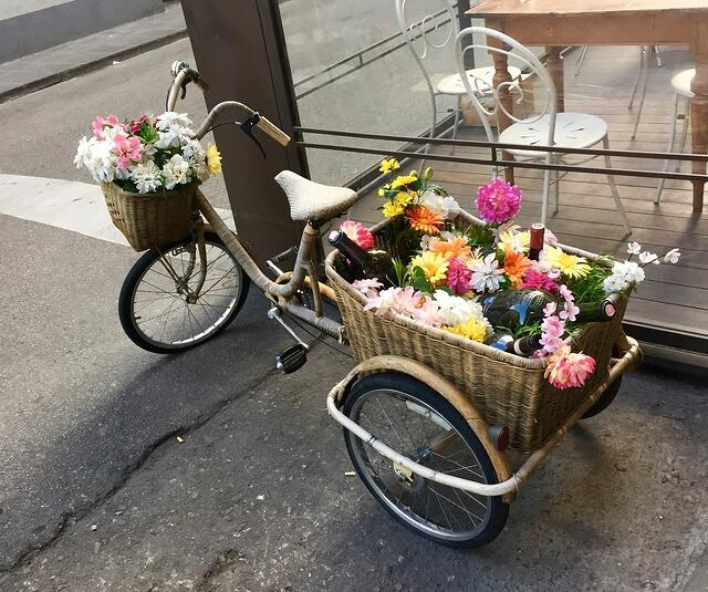CAPAStudyAbroad_Florence_Spring2015_From Emily Kearns - flower bike.jpg