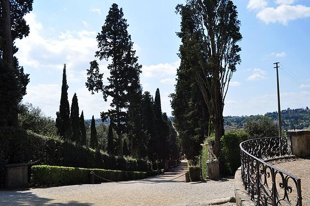CAPAStudyAbroad_Florence_Spring2015_From Emily Kearns Trees.jpeg