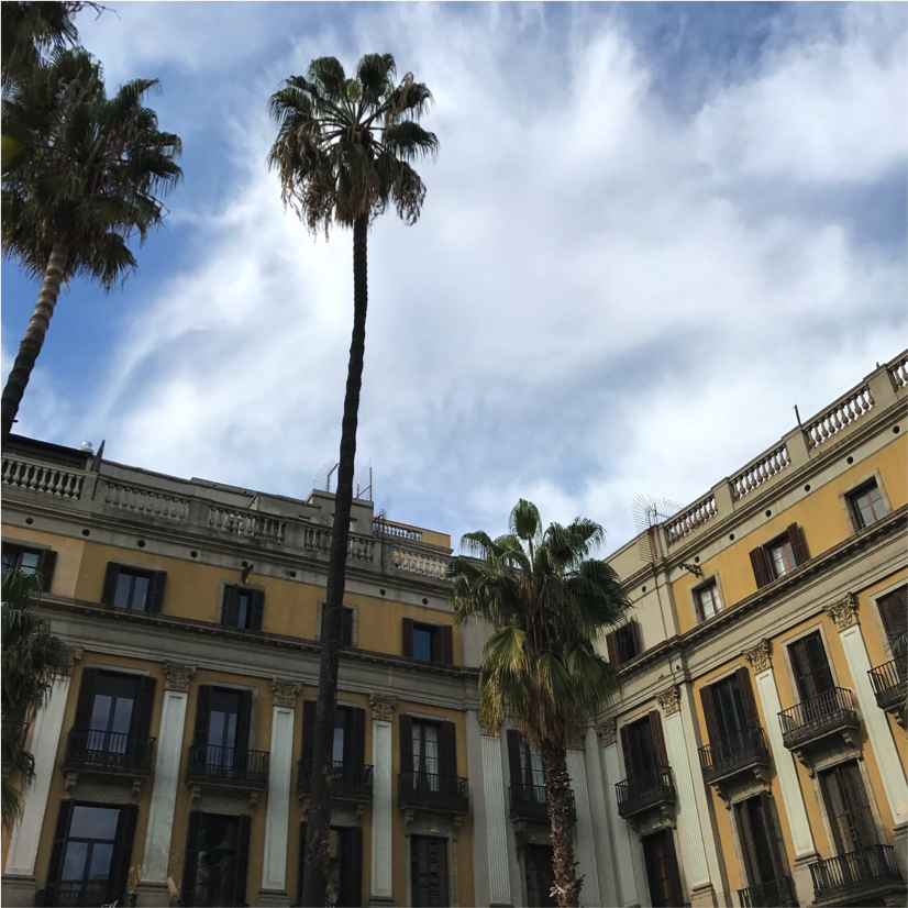 CAPAStudyAbroad_Florence_Spring2017_From Danya Carithers - Barcelona3.png