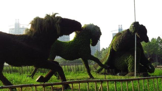 CAPAStudyAbroad_Shanghai_Fall2016_From_Caleb_Kostreva25.jpg
