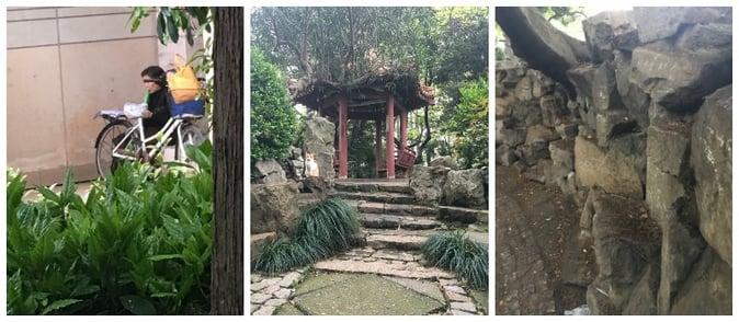 CAPAStudyAbroad_Shanghai_Gardens_of_ECNU.jpg
