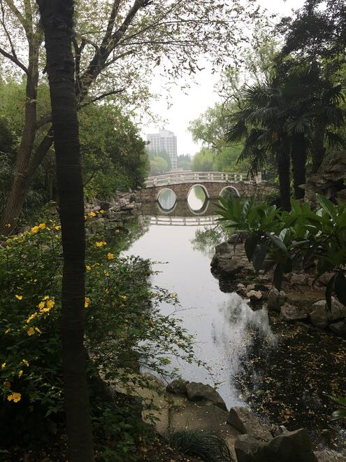CAPAStudyAbroad_Shanghai_Spring2016_From_Daniel_Thompson_-_Garden_of_ECNU4.jpg