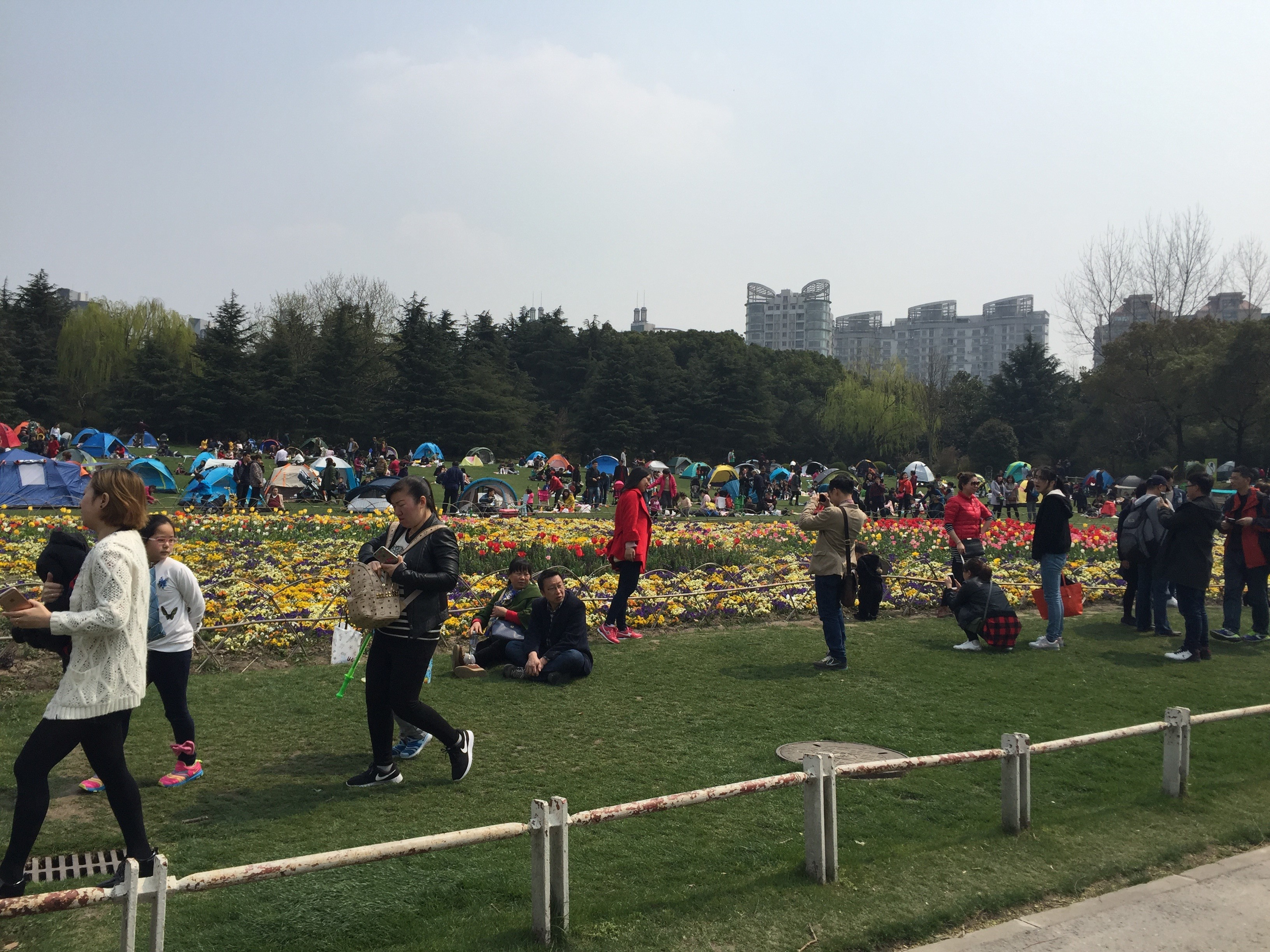 CAPAStudyAbroad_Shanghai_Spring2017_From Danielle Thai Parks 1.jpg