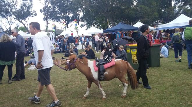 CAPAStudyAbroad_Sydney_Fall2015_From_Jillayne_Adamyk2.jpg