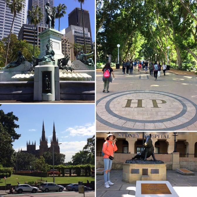 CAPAStudyAbroad_Sydney_Fall2016_From Sara Martin - Sydney Culture4.jpg