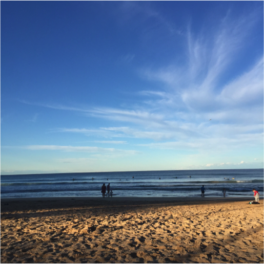 CAPAStudyAbroad_Sydney_Fall2016_From_Matt_Benczkowski_-_10_places_-_beach.png
