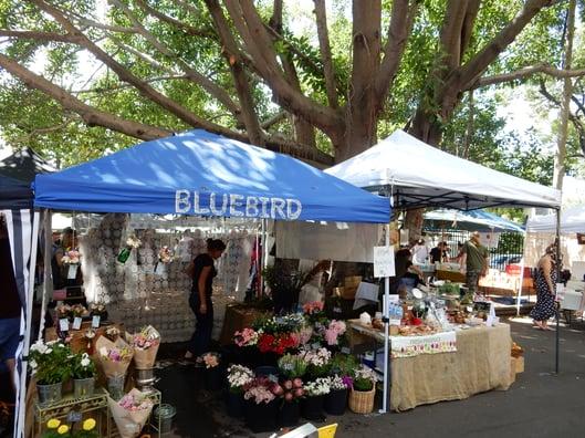 CAPAStudyAbroad_Sydney_Spring2015_From_Kristina_Worm_-_Markets.jpg