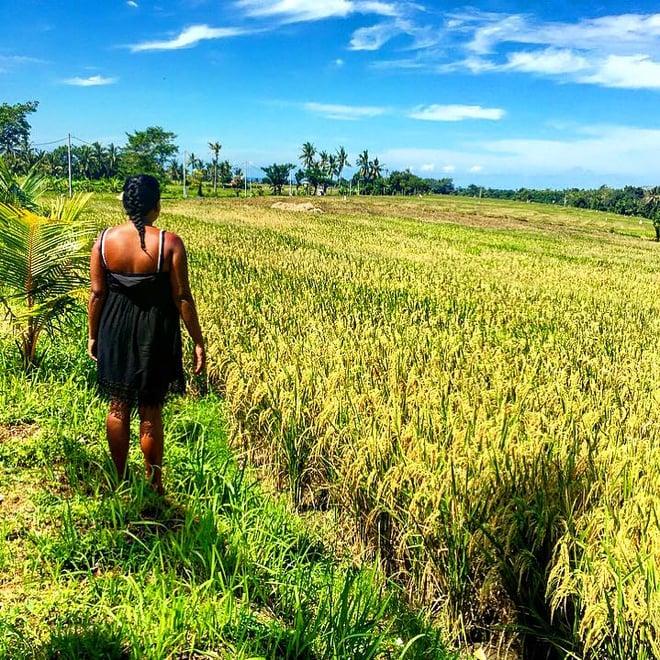 CAPAStudyAbroad_Sydney_Spring2016_From_Kisha_PAtel_-_Spring_Break_in_Bali_-10_rice.jpg