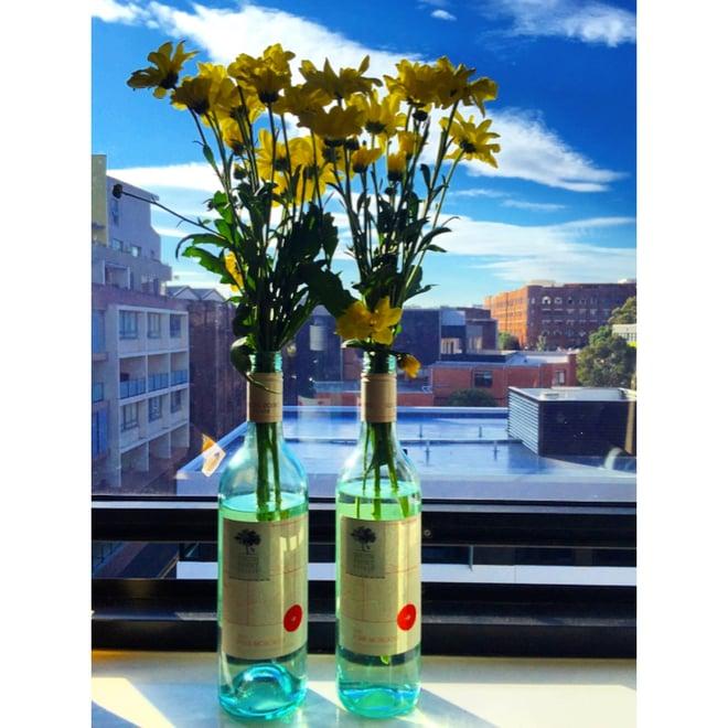 CAPAStudyAbroad_Sydney_Spring2016_From_Kisha_Patel_-__Easter_Weekend_post_-_2_flowers.jpeg