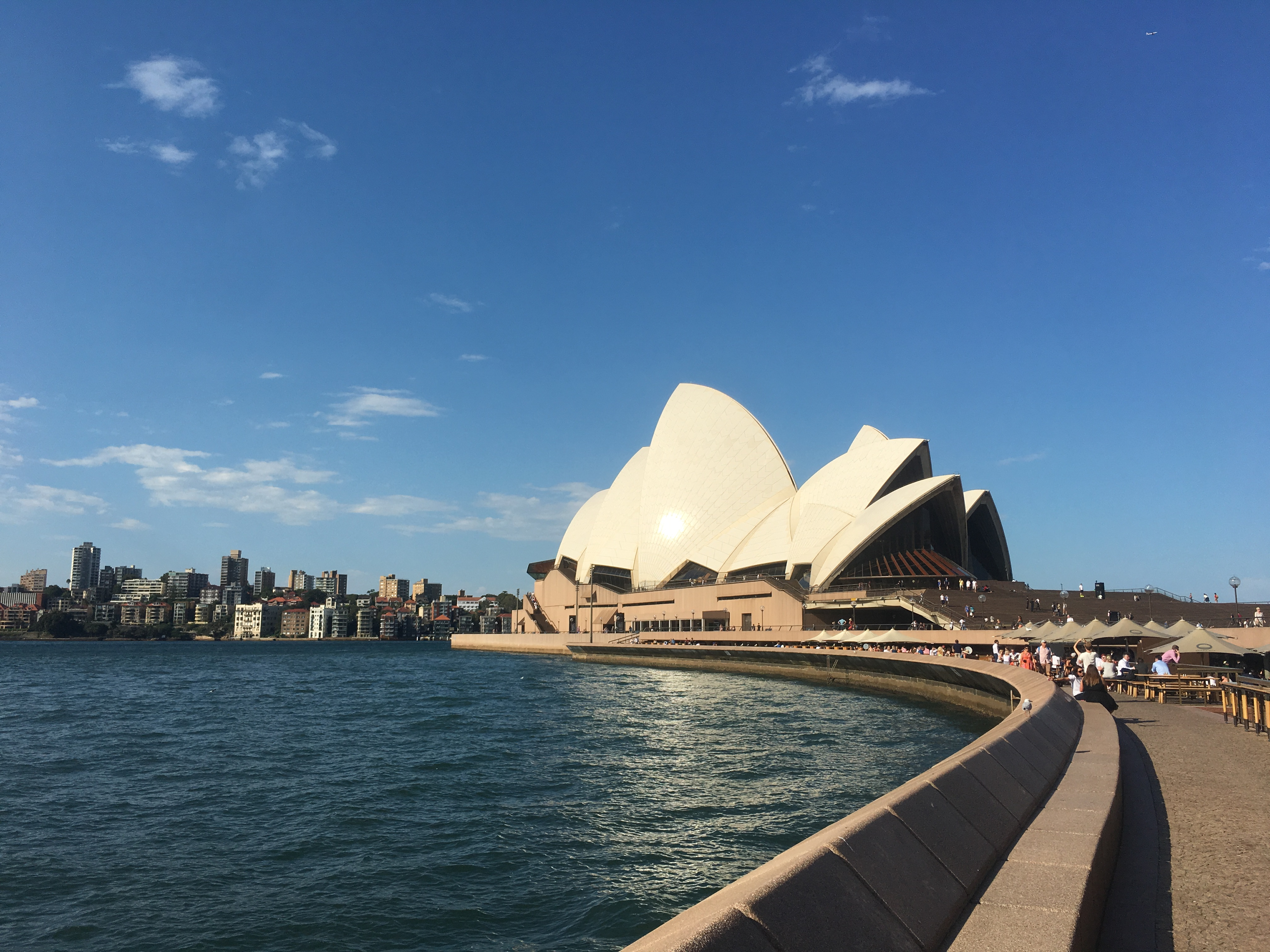 CAPAStudyAbroad_Sydney_Spring2017_From Colin Gilbert - Post 7.1.jpg