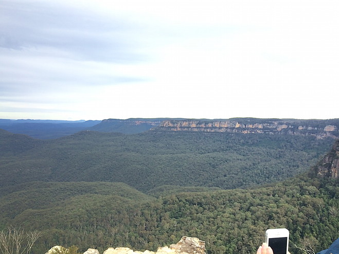 CAPAStudyAbroad_Sydney_Summer2015_From_Sholand_Collins6.png