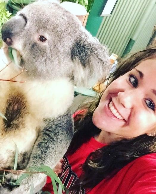 CAPAStudyAbroad_Sydney_Summer2016_From_Ashley_Whittington_-_Koala.jpg