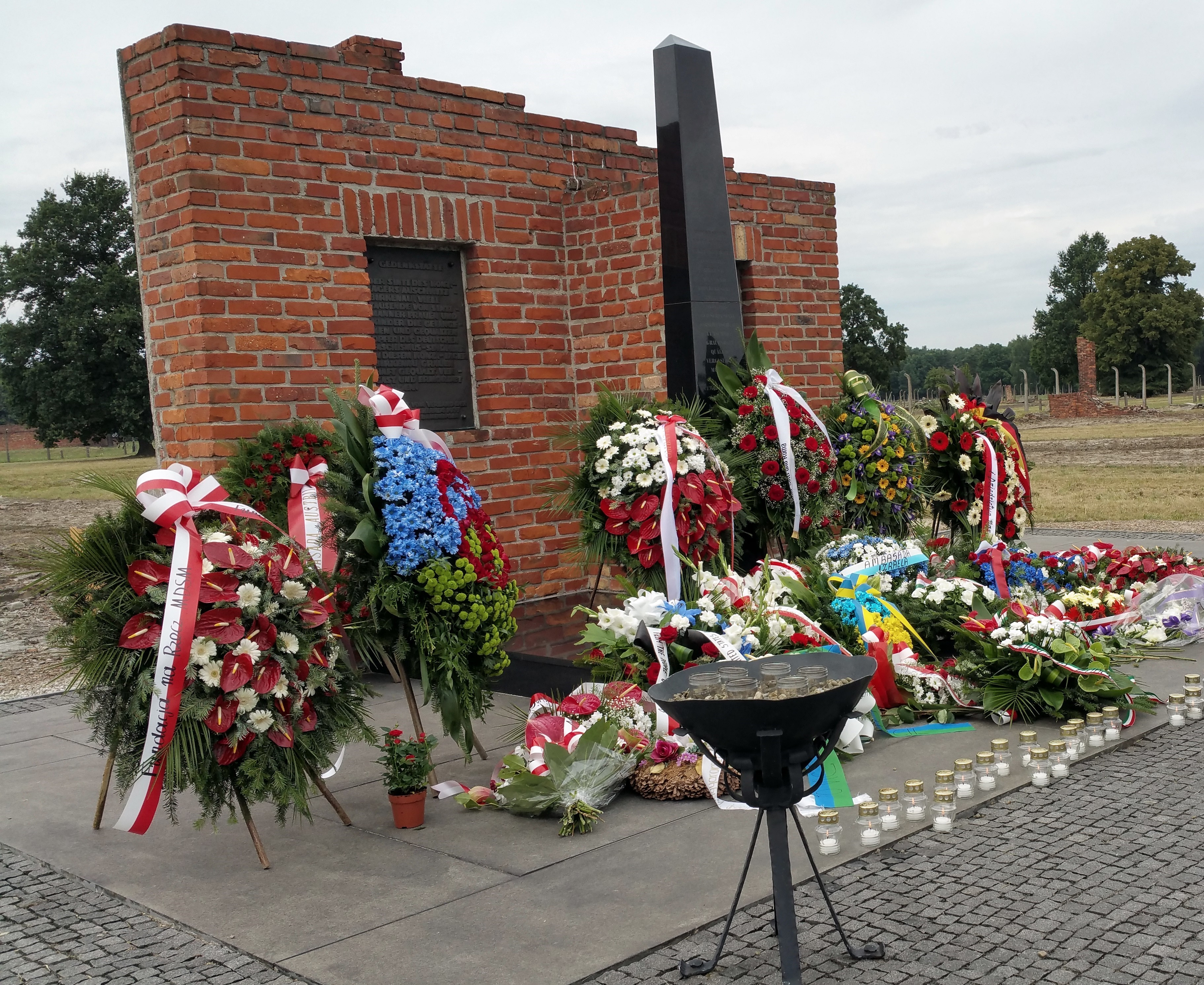 CAPAStudyAbroad_William_New_Interview_-_Commemoration_of_liquidation_of_Gypsy_camp_Auschwitz-Birkenau_8.3.2015.jpg