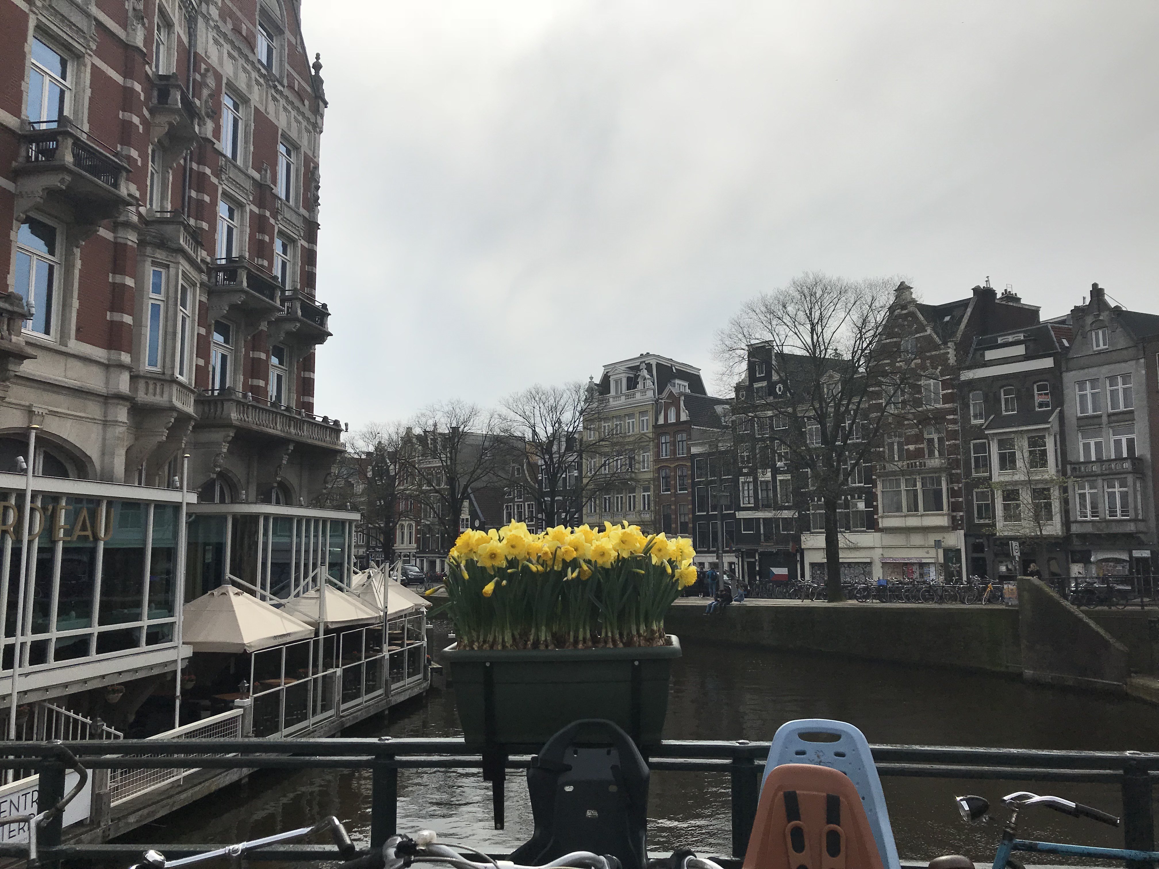 CAPAStudyAbroad_Dublin_Spring2018_From Brandon Mooney - A Canal in Amsterdam