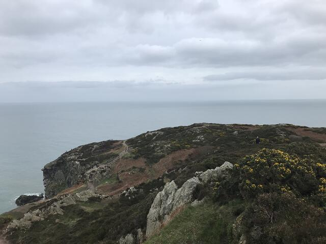 CAPAStudyAbroad_Dublin_Spring2018_From Brandon Mooney - Howth Cliff Walk