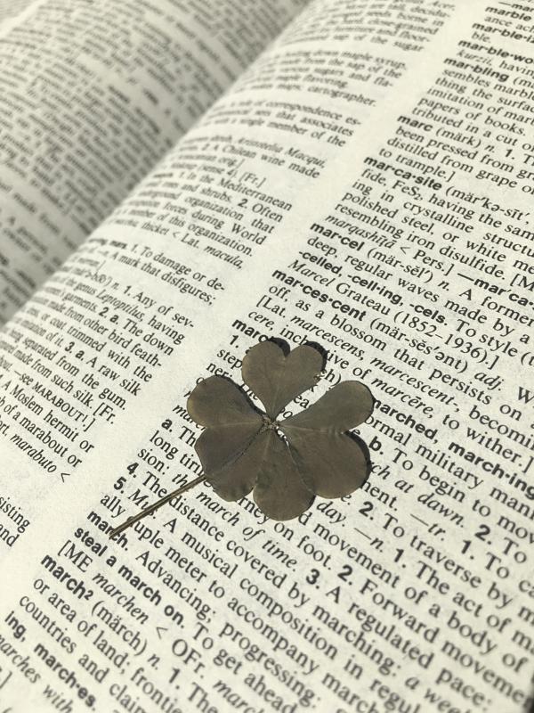 A four-leaf clover