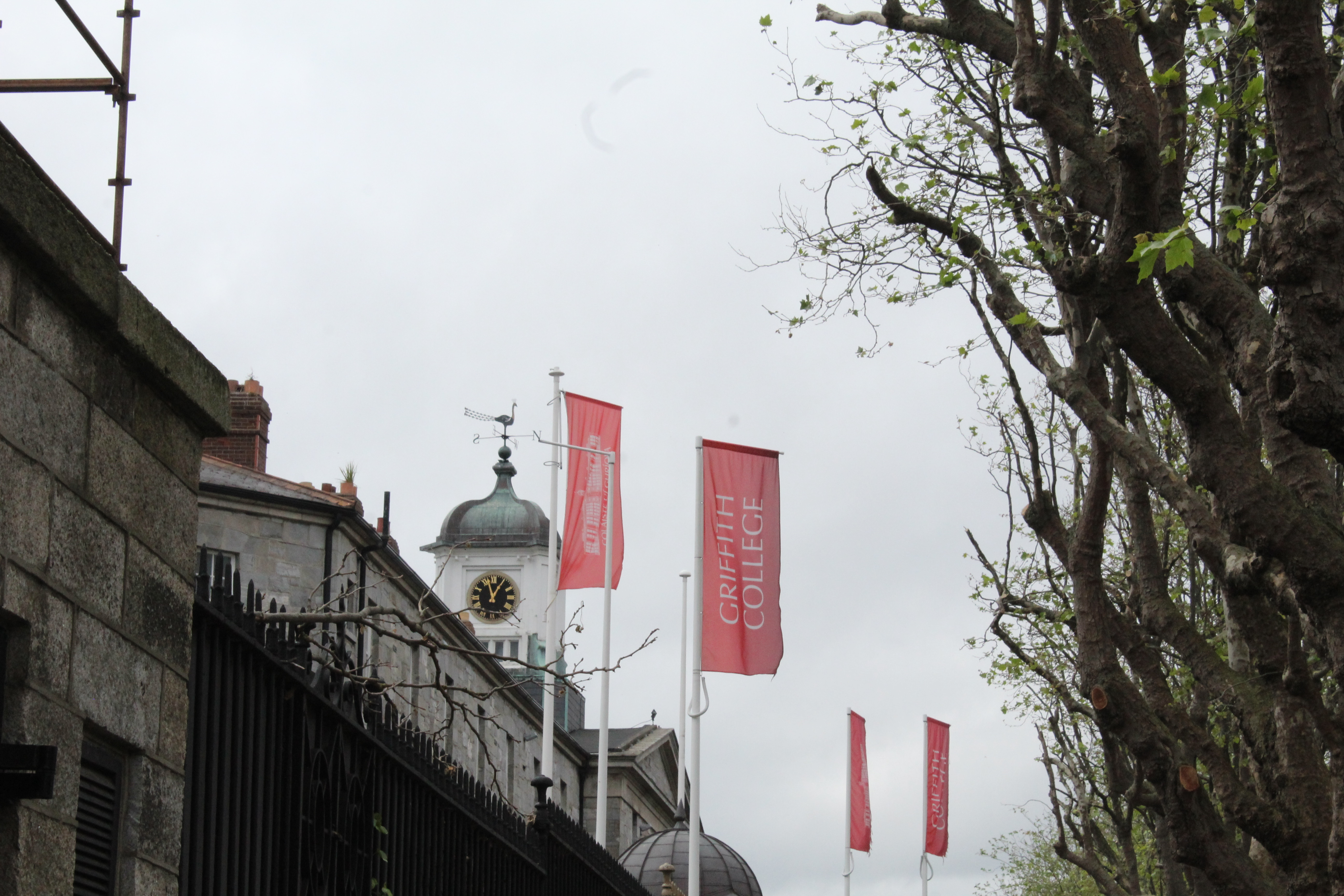 Griffith College flags