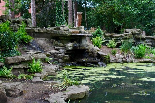 CAPAStudyAbroad_Summer2019_Dublin_ClareMullin_Pond