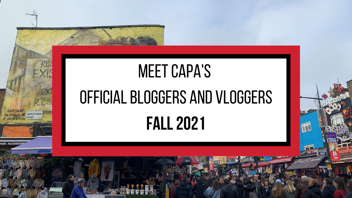 Introducing Bloggers and Vloggers (2)