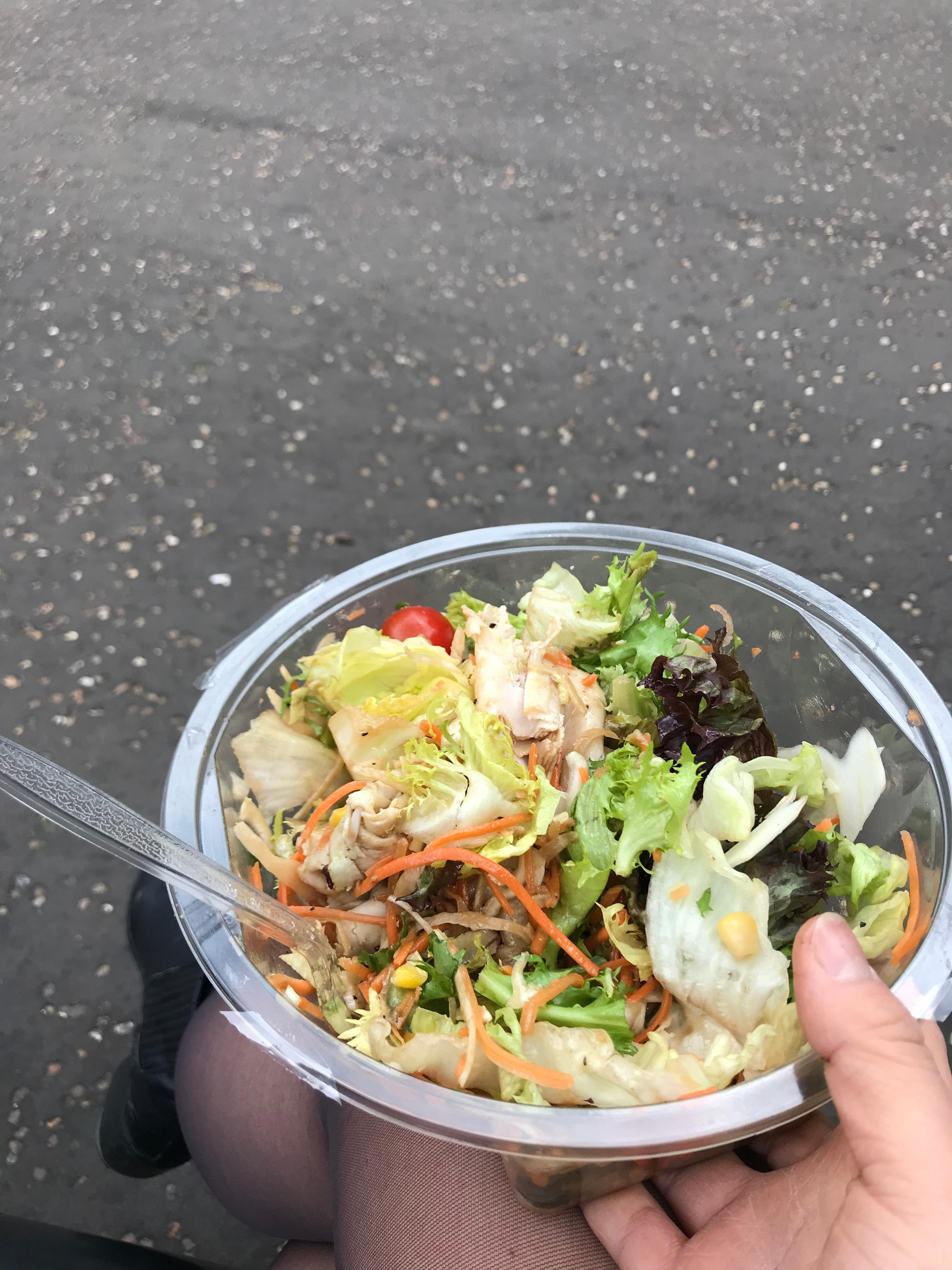 CAPAStudyAbroad_London_Spring2018_From Ellie Telander - Packed lunch