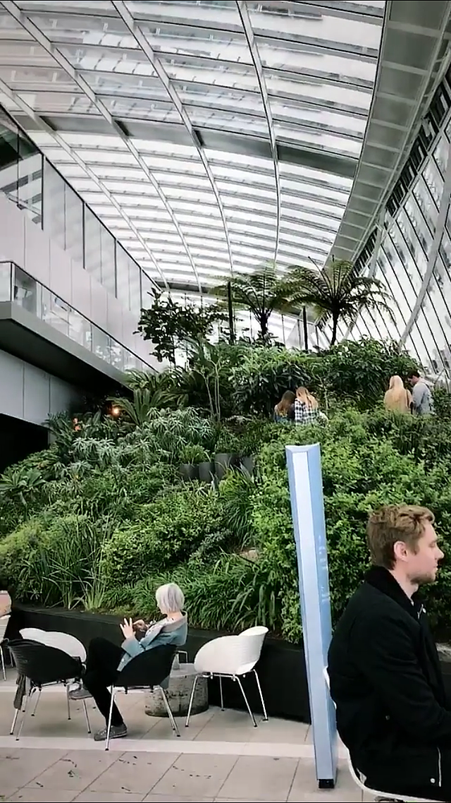 CAPAStudyAbroad_London_Spring2018_From Ellie Telander - Sky Garden