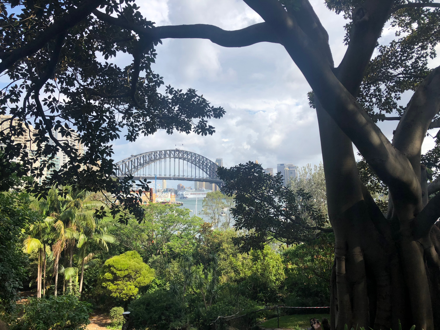 CAPAStudyAbroad_Sydney_Spring2018_From Alex Crowe - view of Sydney bridge