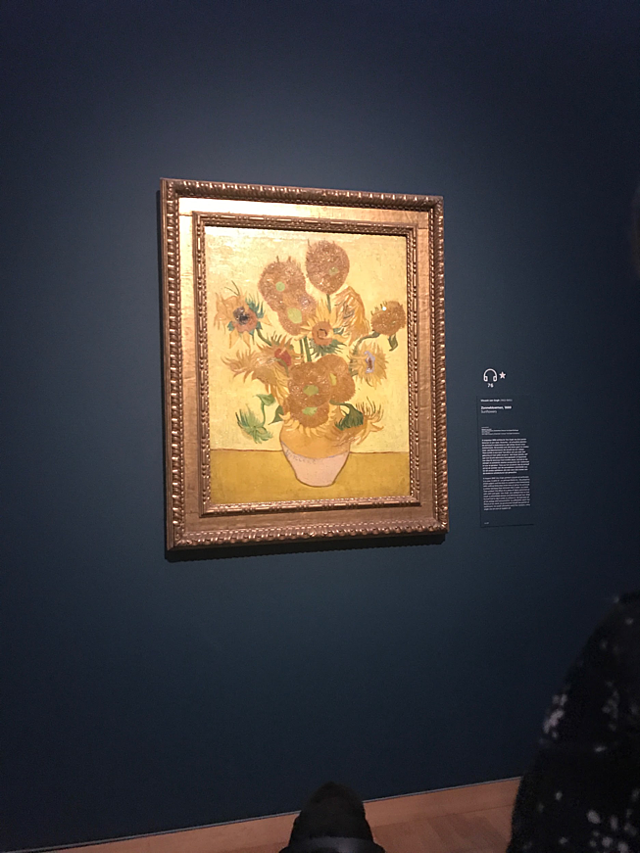 CAPAStudyAbroad_Fall2017_Florence_From Hayley Parker - Fall Break_Sunflowers by Van Gogh in Amsterdam.png