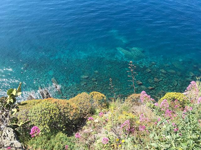 CAPAStudyAbroad_Florence_Summer2018_From Hannah Hardenbergh - View Over the Wall in Corniglia
