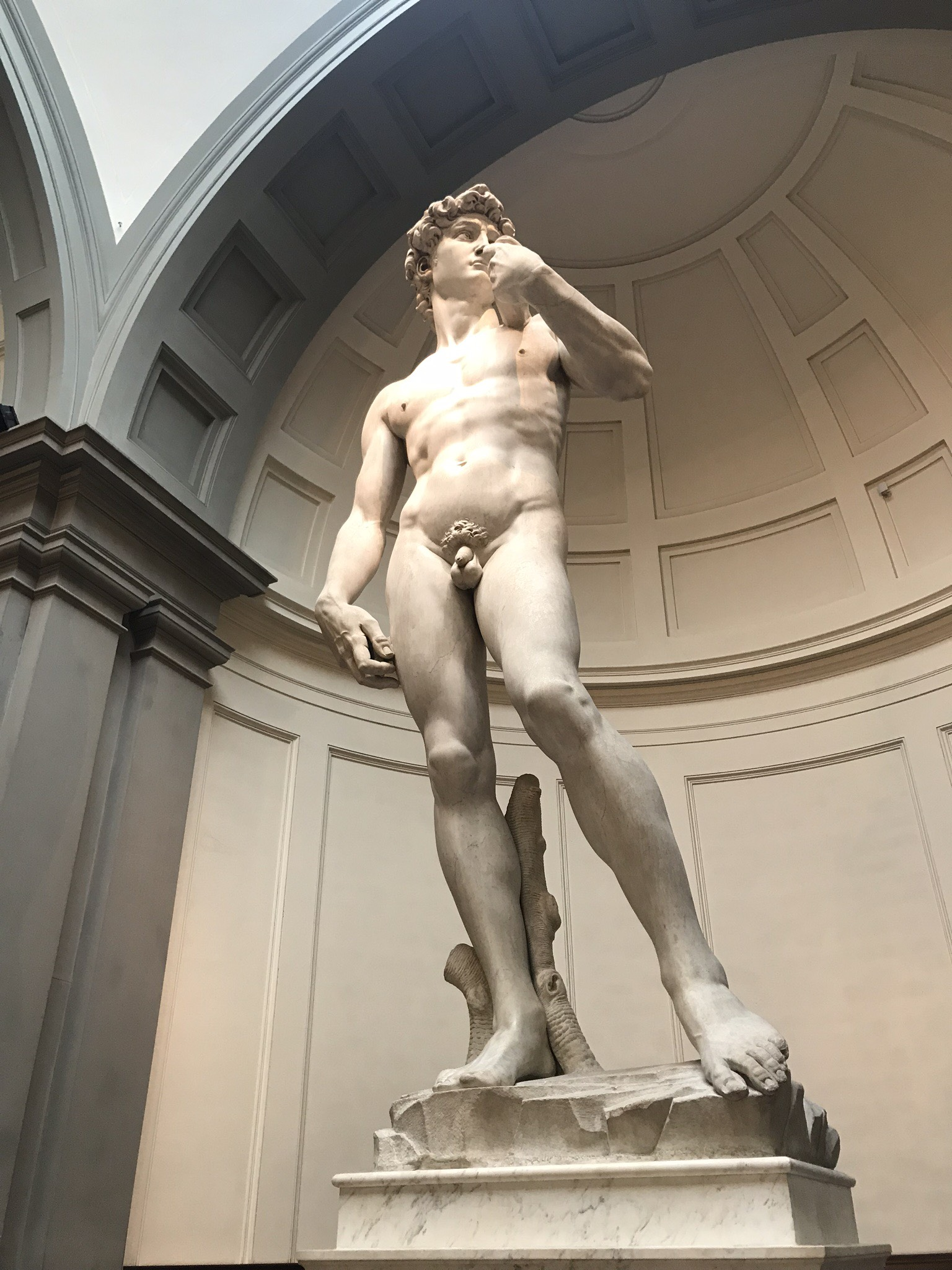 The David in Florence