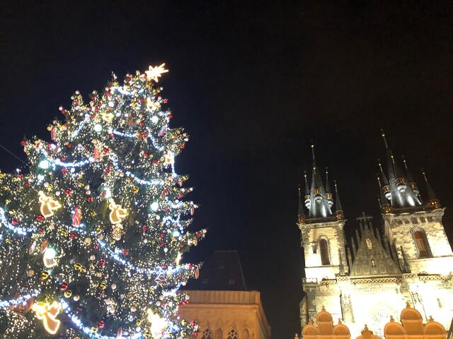 The Christmas tree in Prague was beautiful.