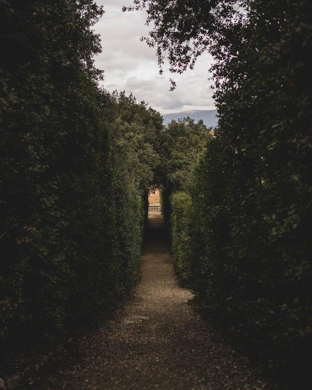 Path at The Boboli Gardens