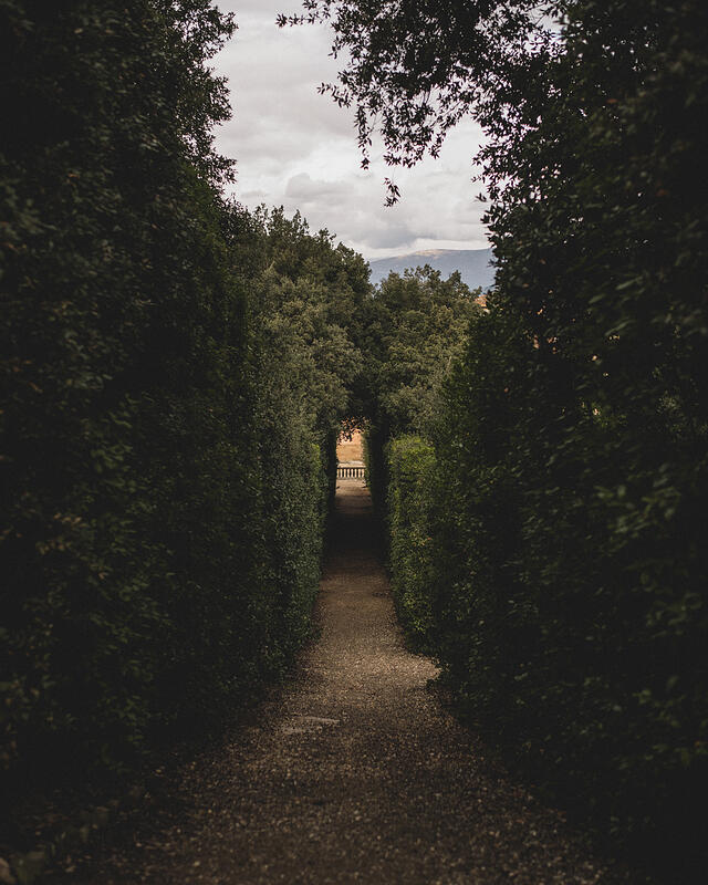Path at The Boboli Gardens