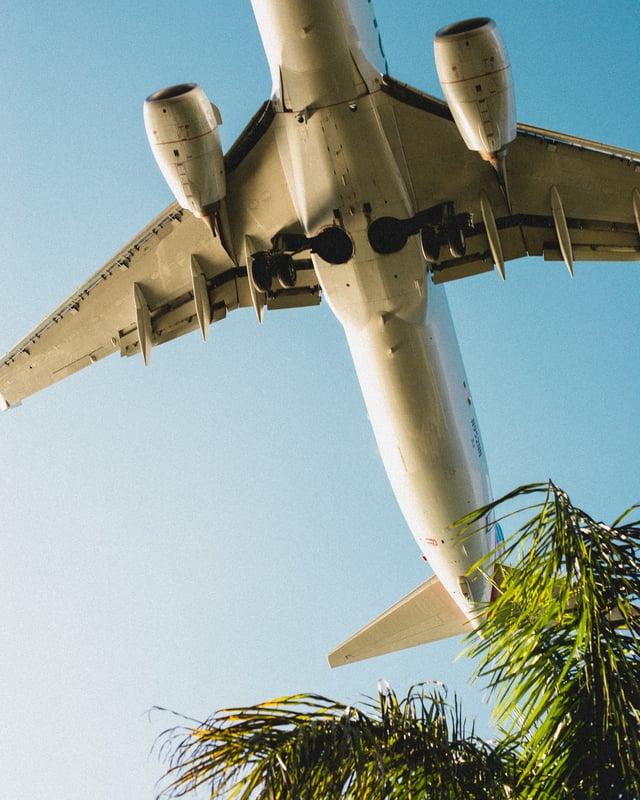 Plane Overhead
